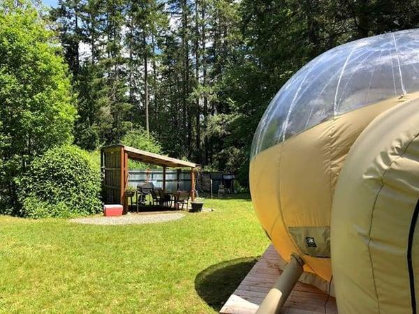 Bubble tent rental