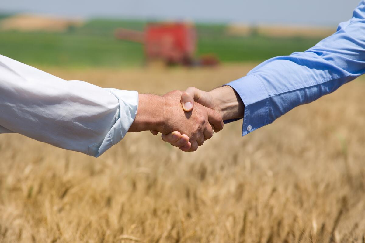 Buying Land Handshake