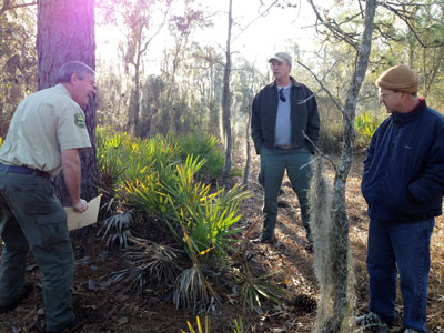 Forest ranger point out a tree to two men