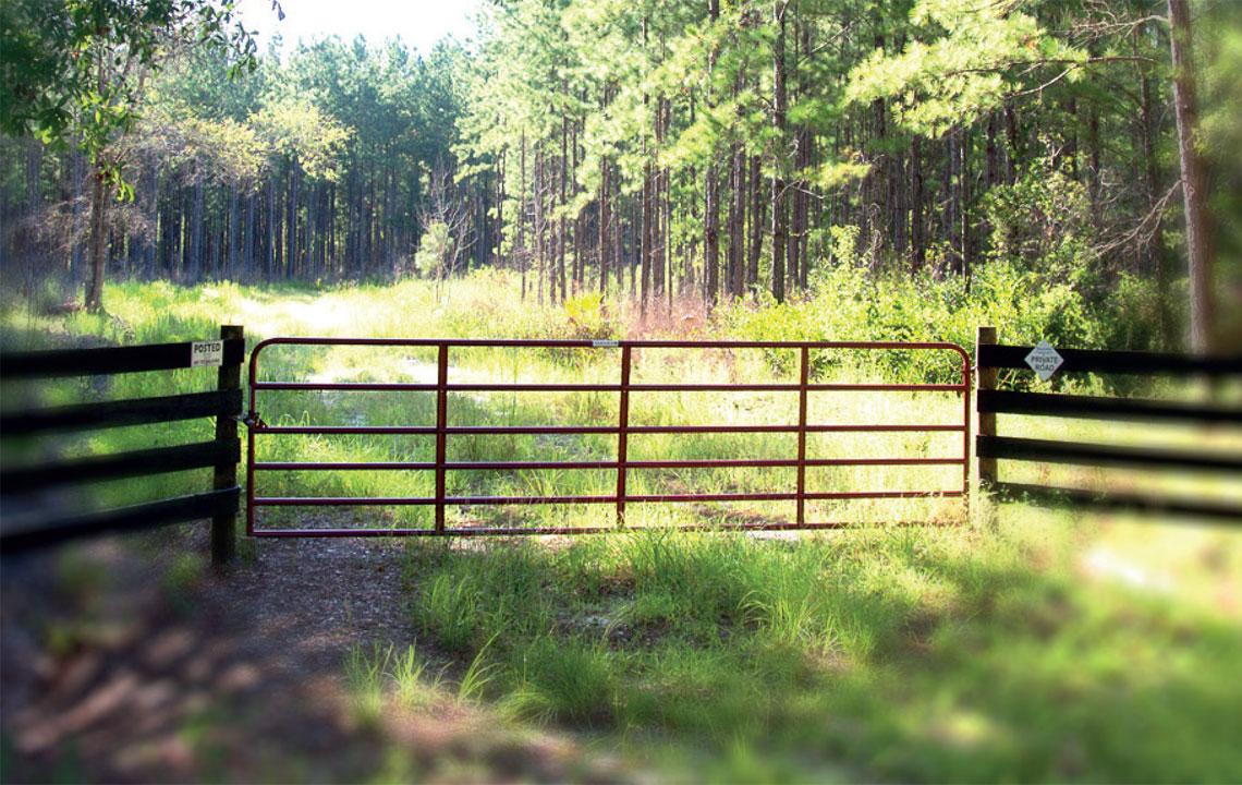 Florida Rural Land