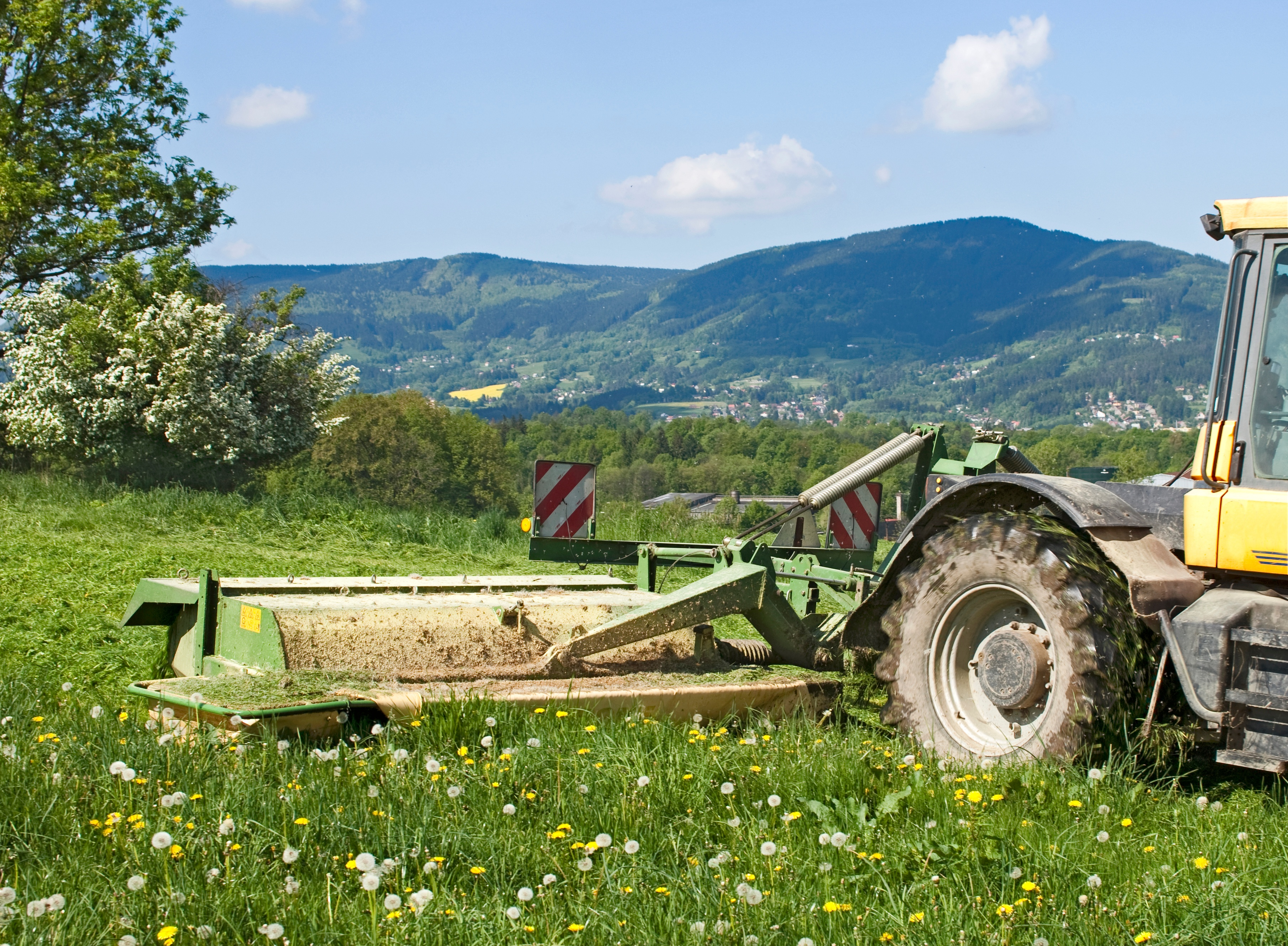 Clearing Land - Tractor with Bush Hog