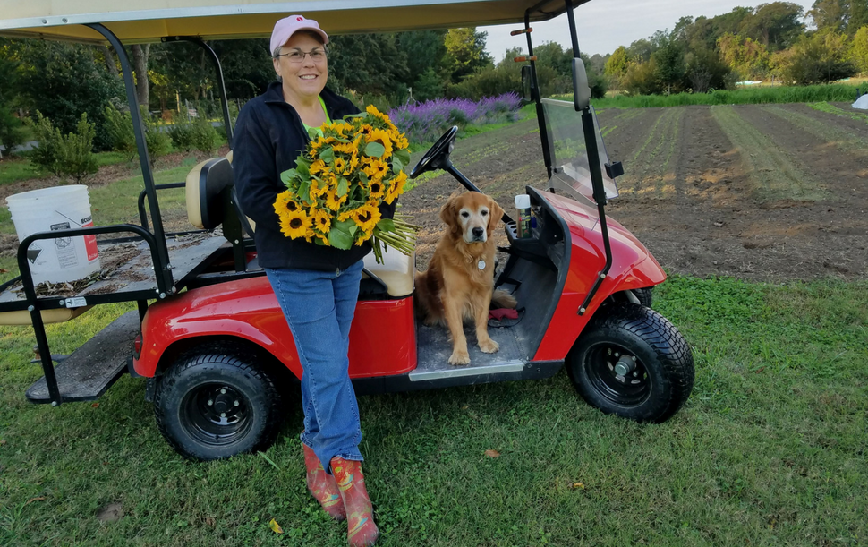 Lisa with Cut Flowers