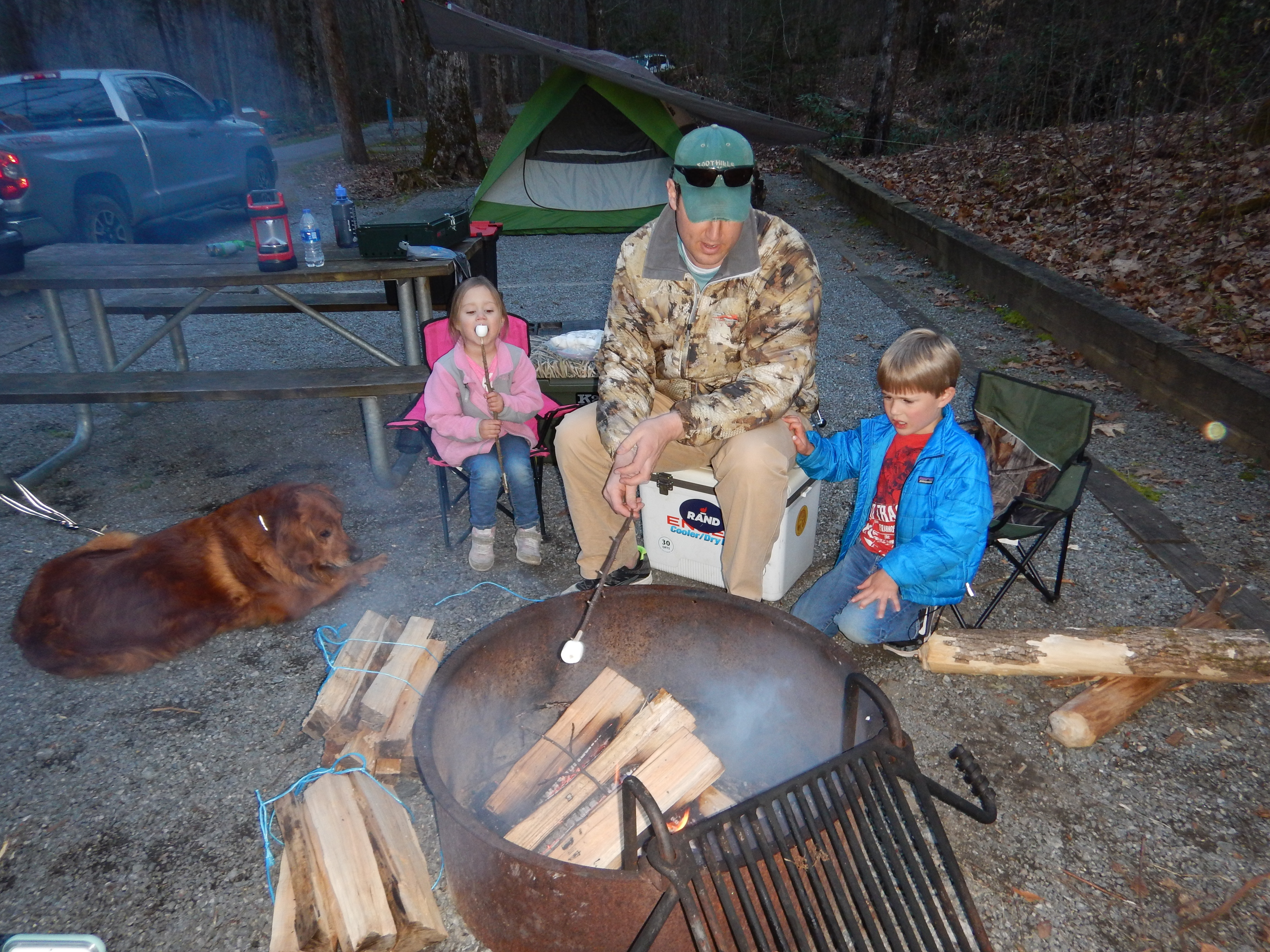 Roasting Marshmallows - Camping with Kids