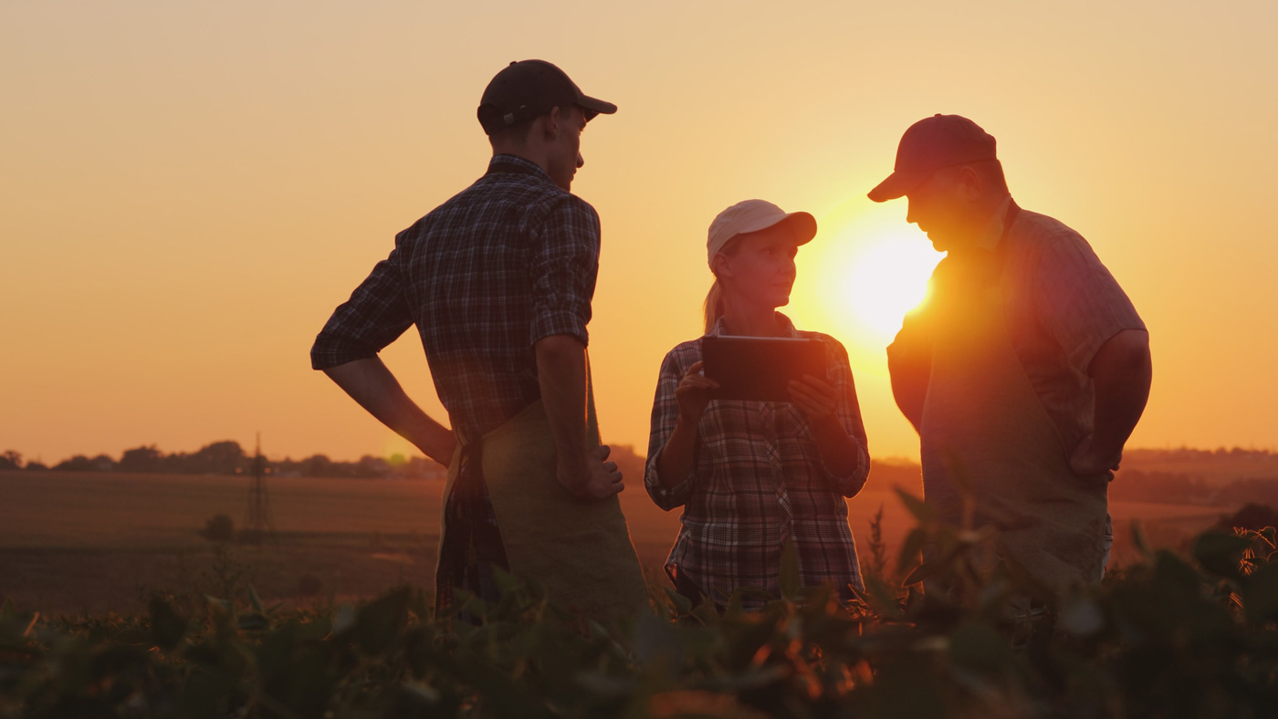 family discussing plans on farm at sunset