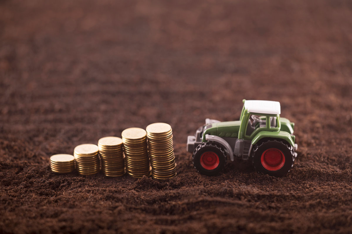 toy-tractor-near-stacked-coins-on-dirt