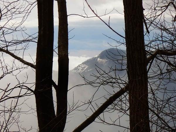 view of mountains through winter trees