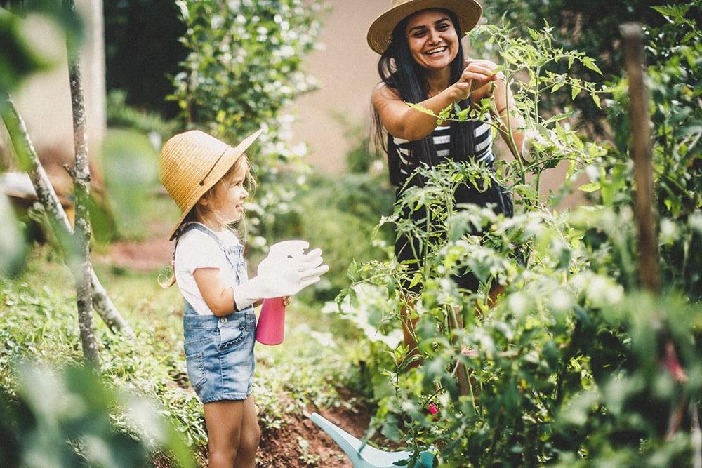 Gardening impacts health