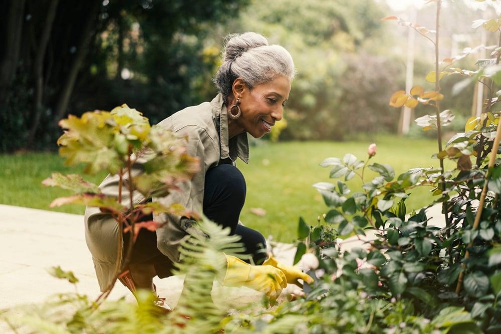 Gardening improves brain health