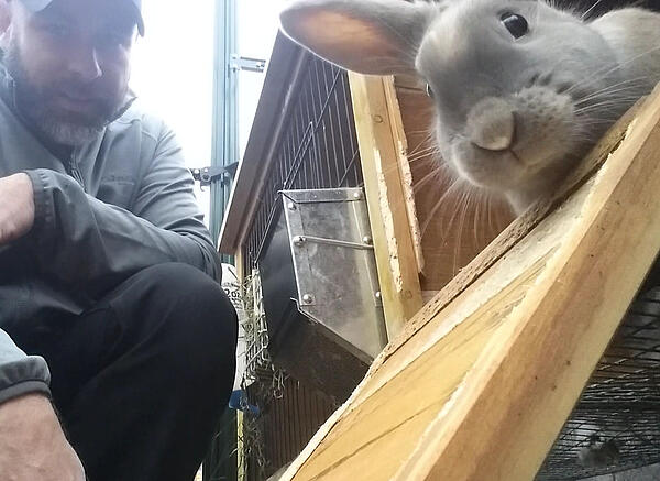 Harold hanging out with a rabbit