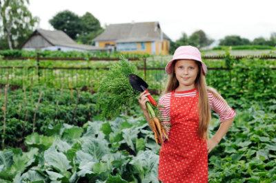 400_gardening_on_small_hobby_farm.jpg