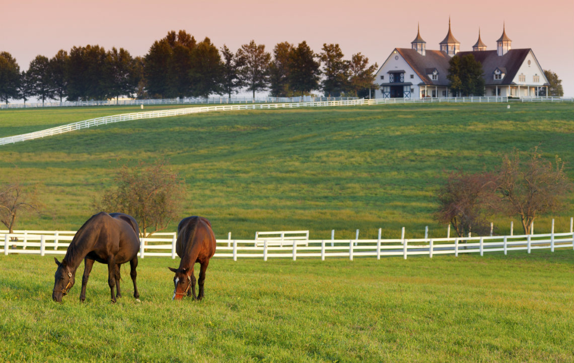 Ideal Land for_Horse Boarding