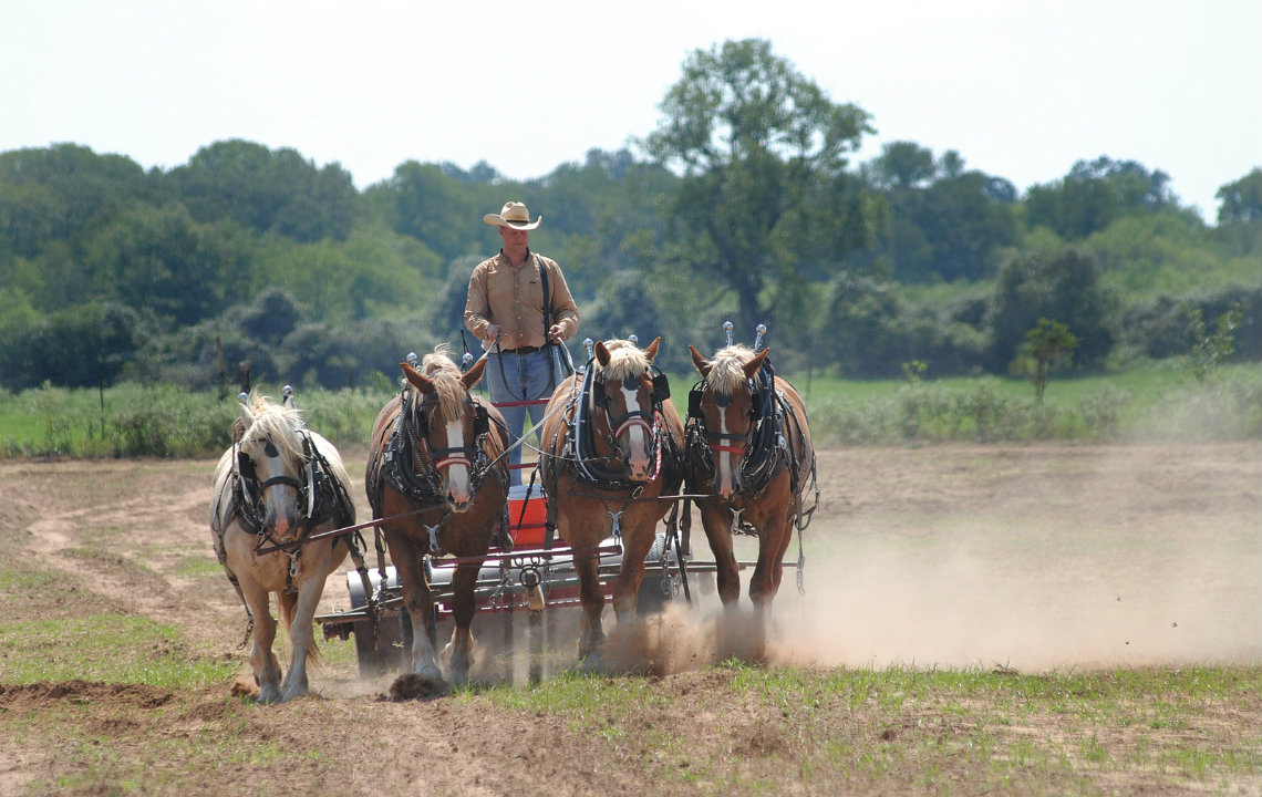 Ben Godfrey using front horses on a sustainable hobby farm in Cameron Texas