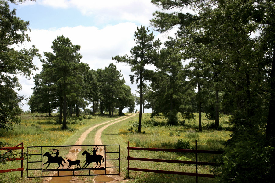 How to buy Texas land