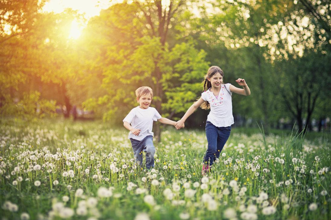 Country_Kids_in_Wildflower_Field_1.jpg