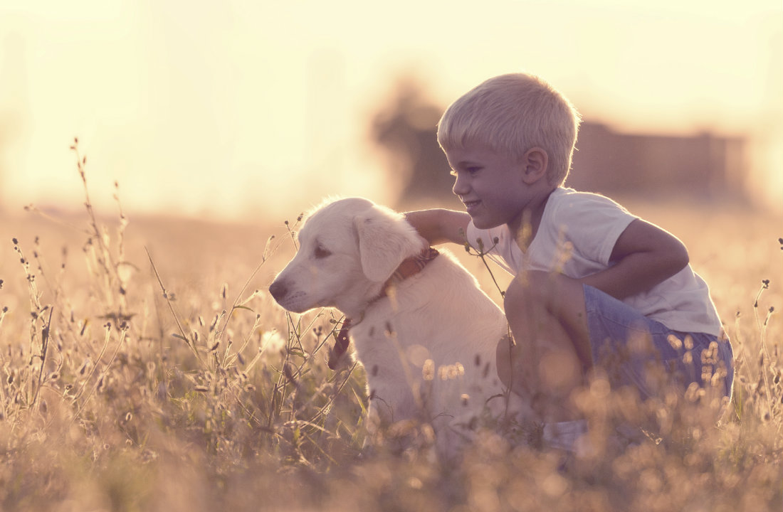 Country_Life_Boy_With_Dog.jpg