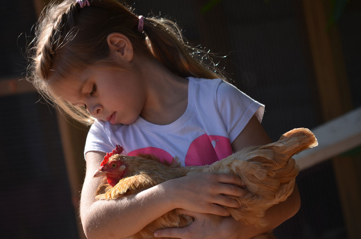 How Humans Benefit From Farm Animals