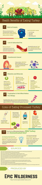 Eating Wild Turkey Health Benefits.jpg