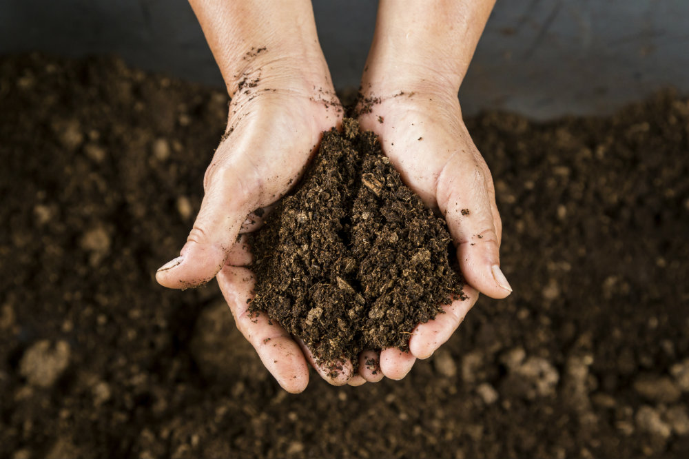 Get soil tested when master planning your garden