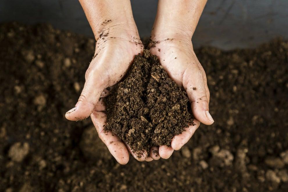Soil characteristics can impact land value