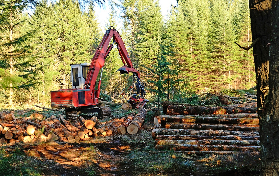 Repurpose_wood_cleared_from_acreage.jpg