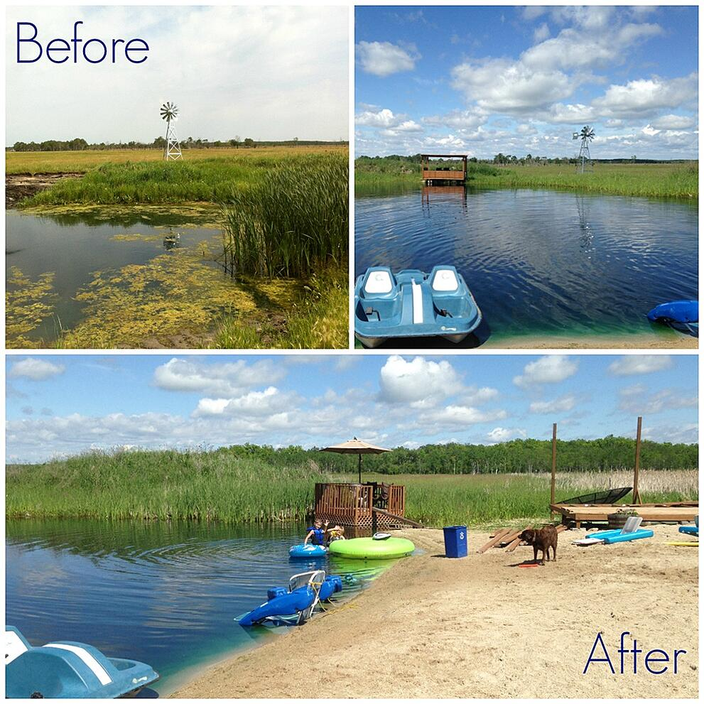 Pond Before and After Natural Cleaning.jpg