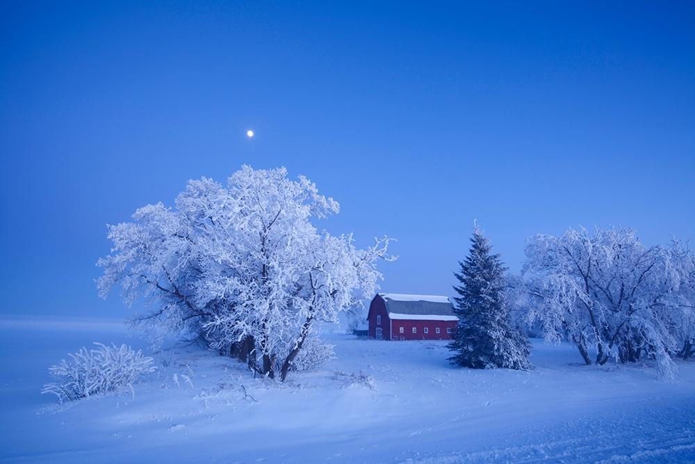 Silent Night Country Christmas.jpg