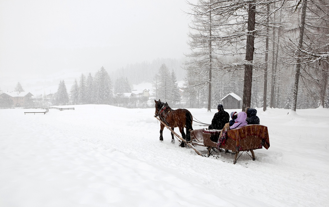 One horse open sleigh in the country at Christmas