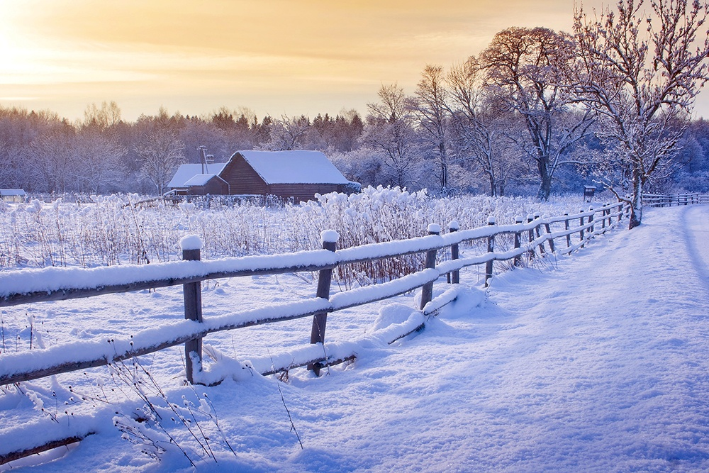 Snowy Christmas in the Country.jpg