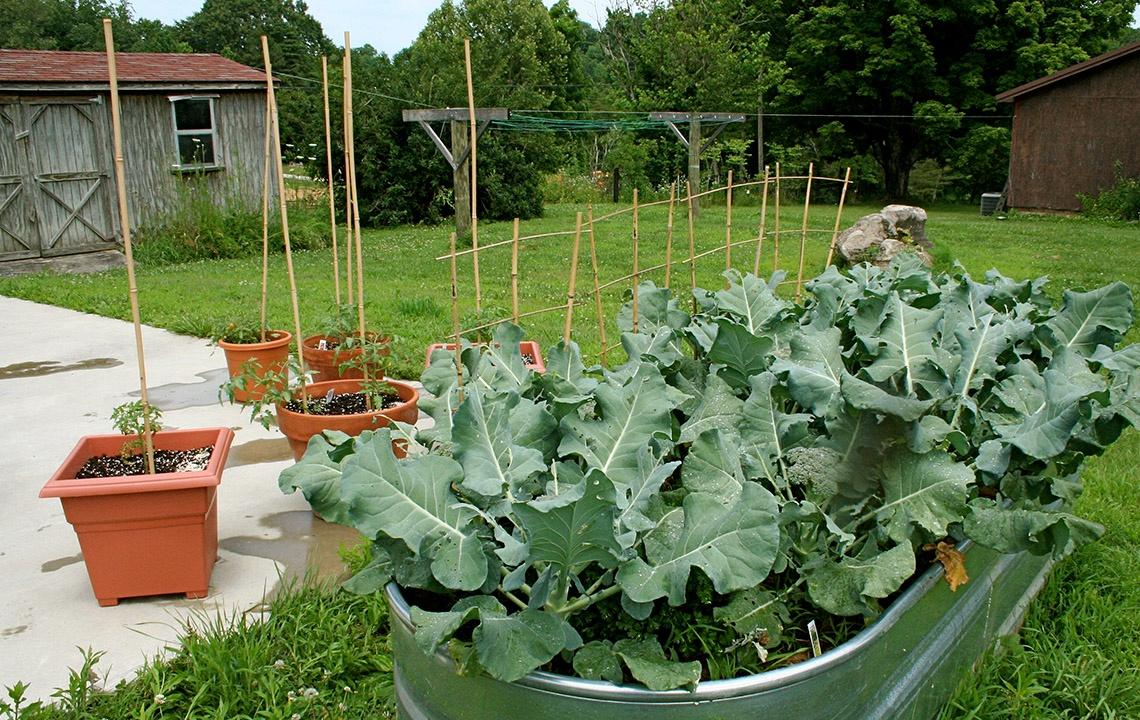 Spring Garden Planning.jpg