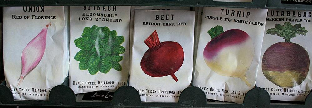 Spring Garden Seed Packets.jpg
