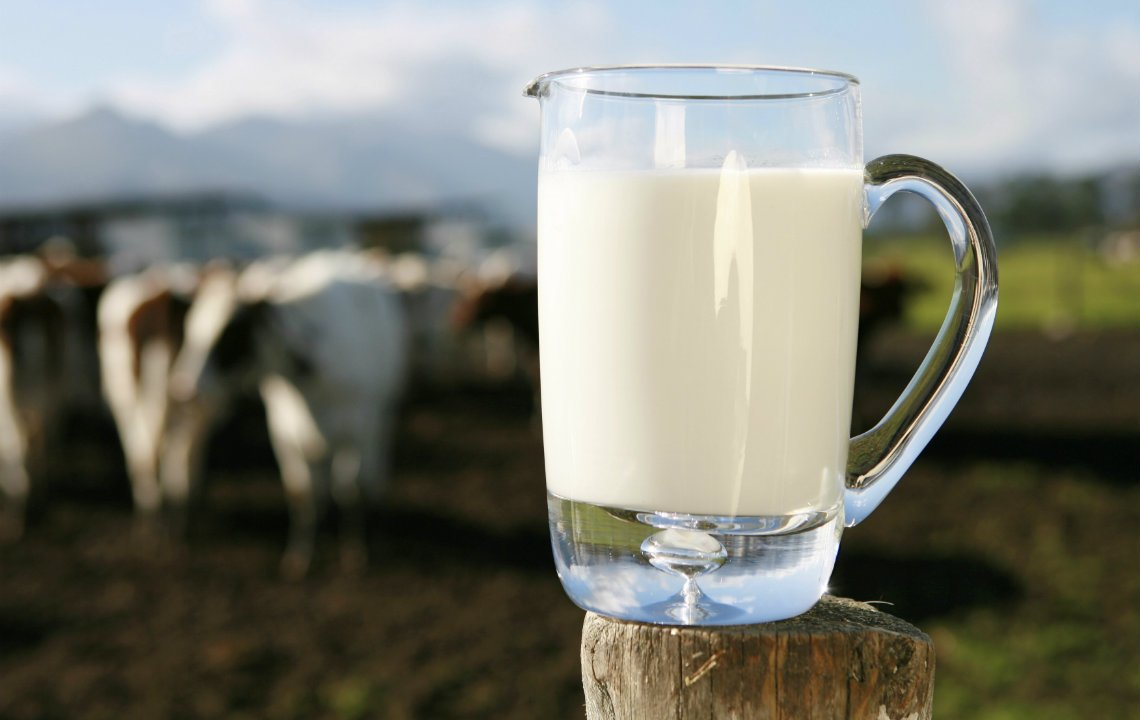 Ways to use up fresh milk