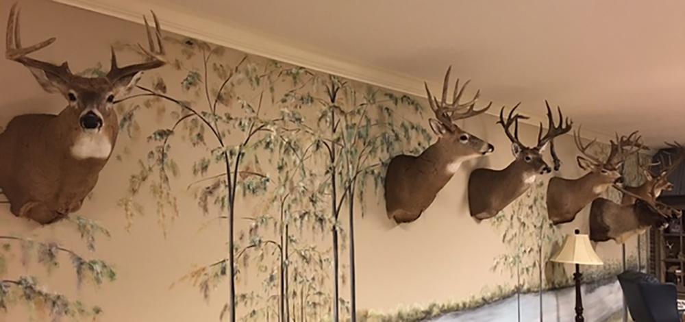 Simmons Hunting Trophy Room.jpg