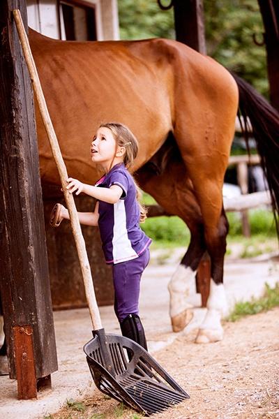 Kids Farm Chores with Horse.jpg