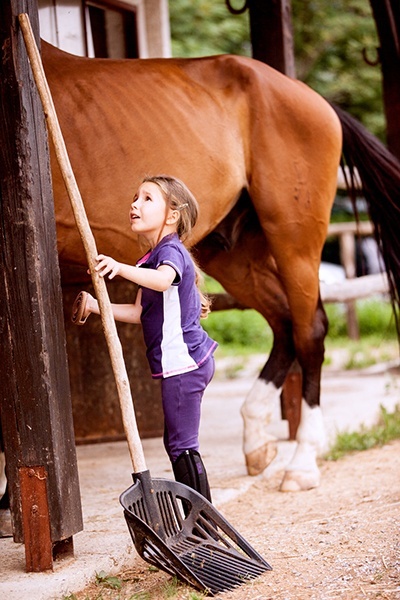Kids Farm Chores with Horse.jpg