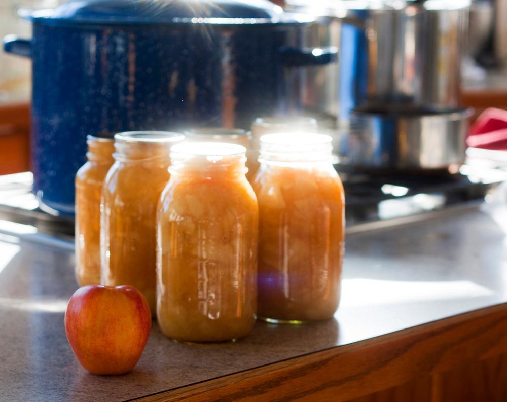 make fruit purees to preserve produce.jpg