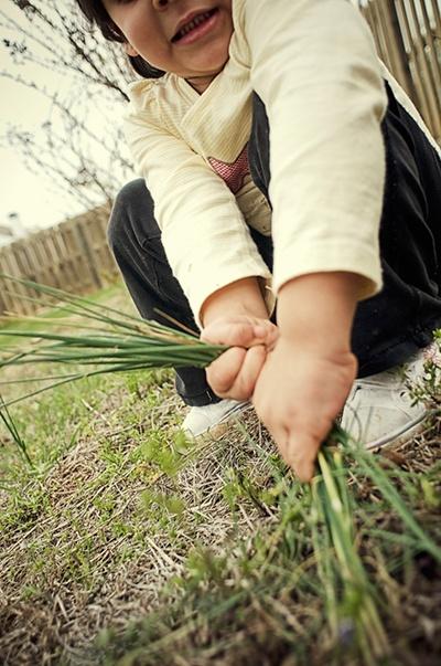 Decrease_weeding_in_spring.jpg