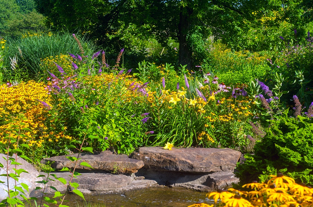 Butterfly Garden Design.jpg