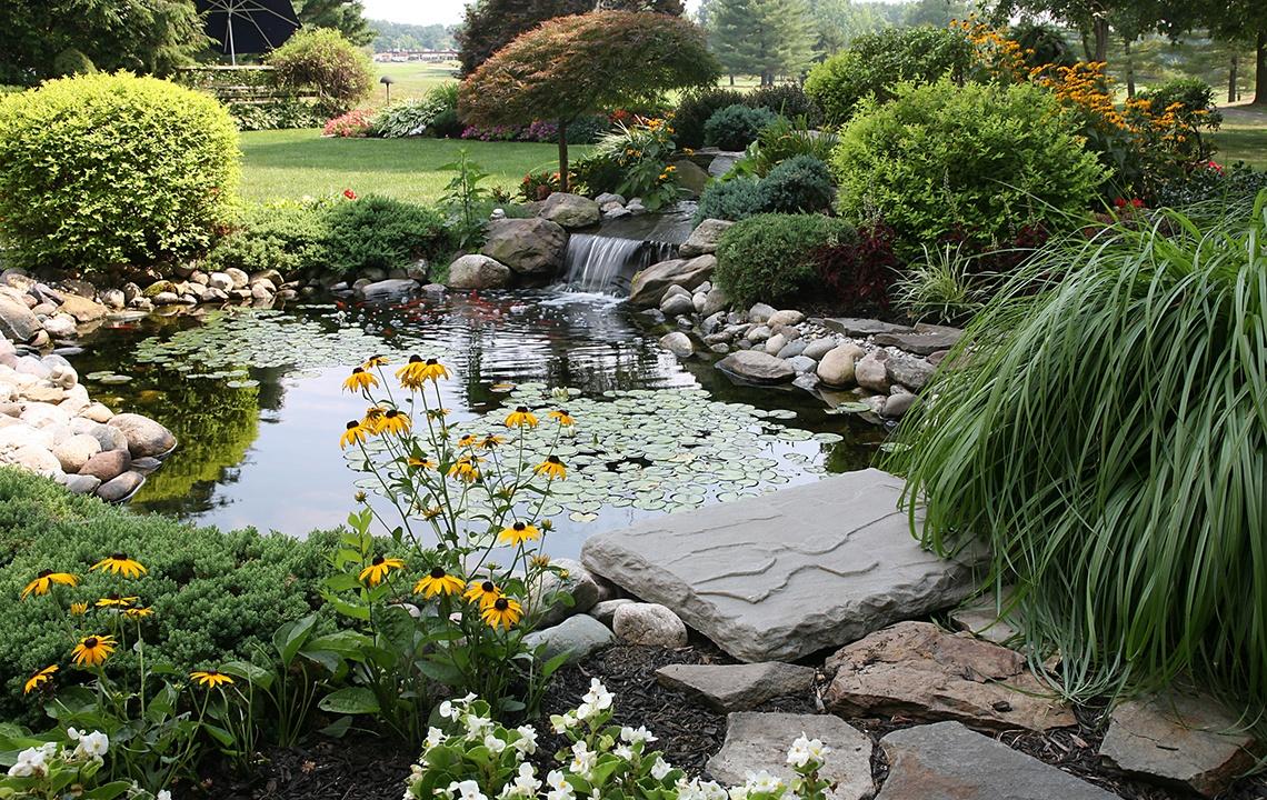 DIY Water Garden.jpg