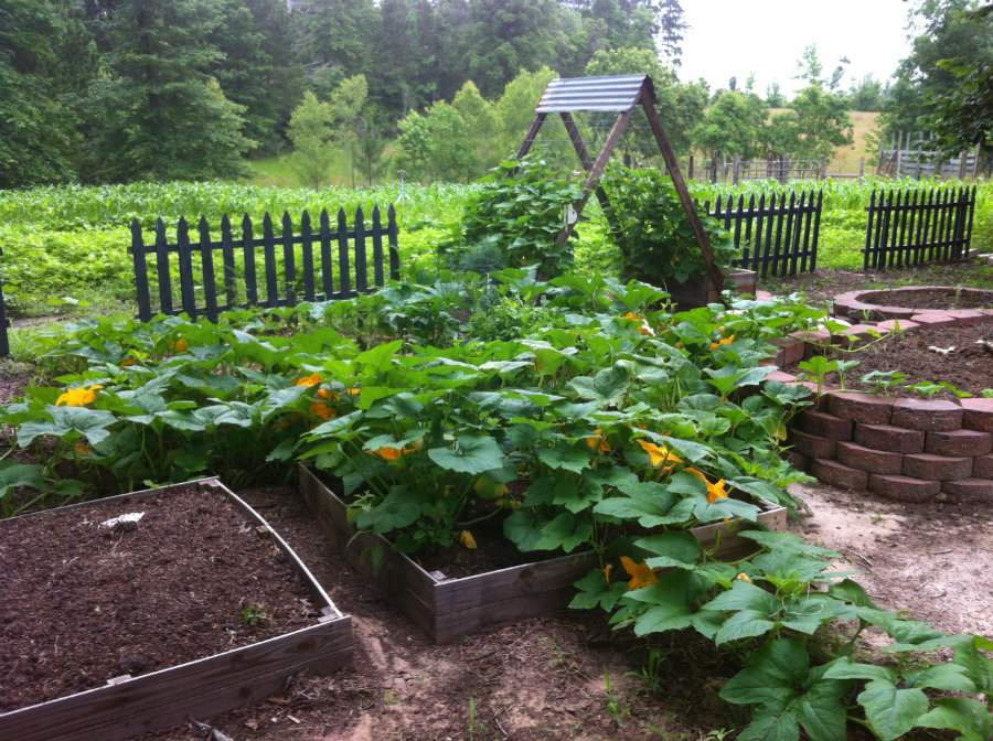 Hobby_Farm_Garden.jpg