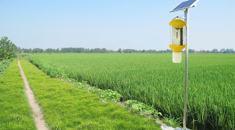 Organic_Solar_Power_Pest_Control.jpg