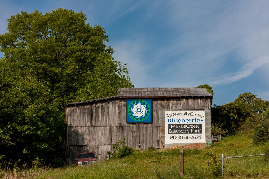 Blueberry_Farm_Quilt_Barn_1100.jpg