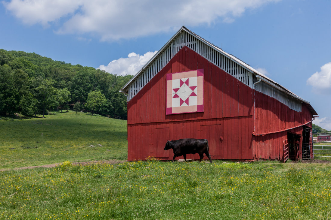 Quilt_Barns_with_Pink_Square_1100.jpg