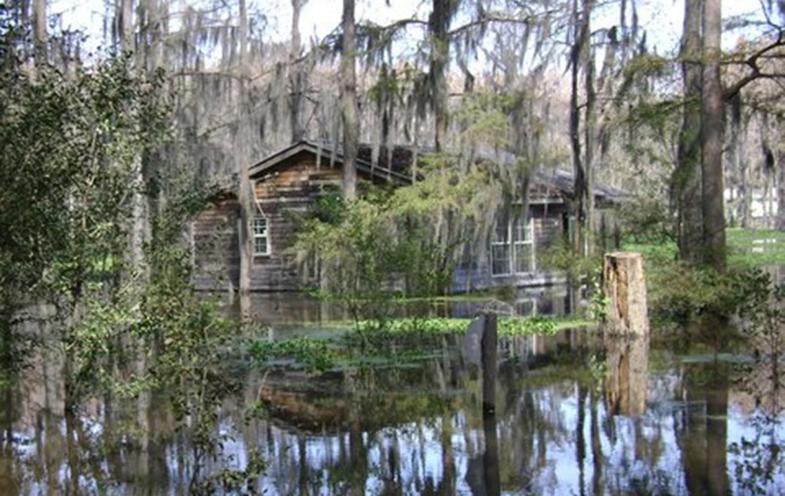 Caddo_Lake_Texas.jpg