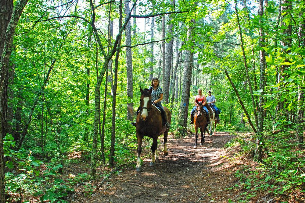 Georgia_Hard_Labor_Creek_horse_trail.jpg