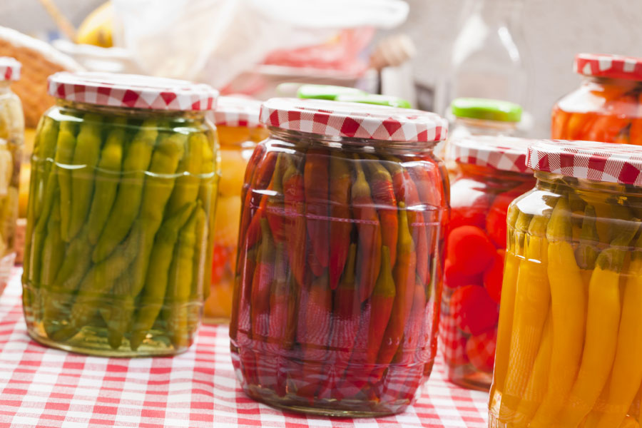 vegetables can be lacto-fermented