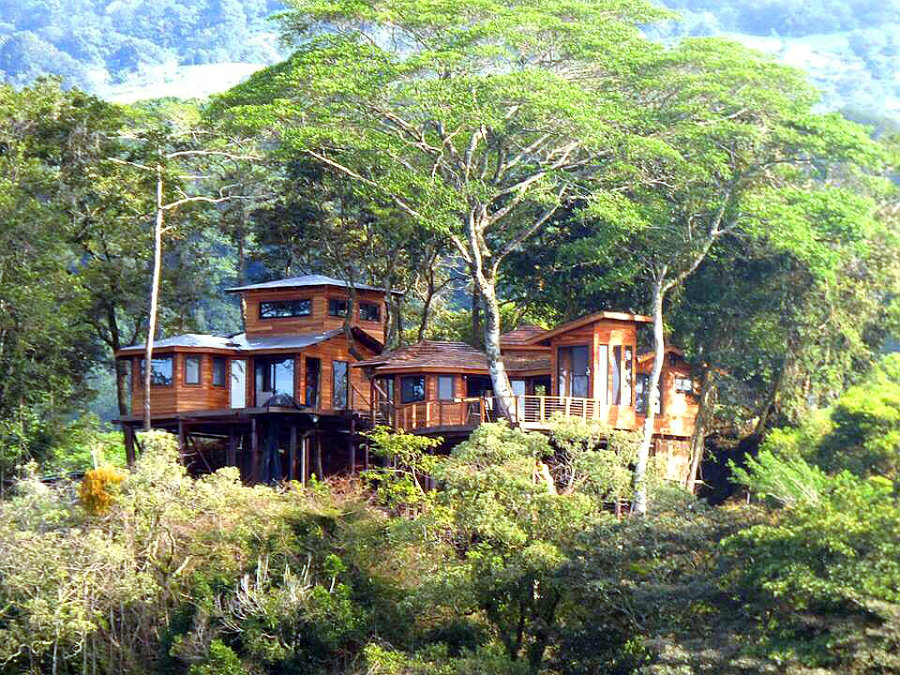 luxury treehouse hotel panama