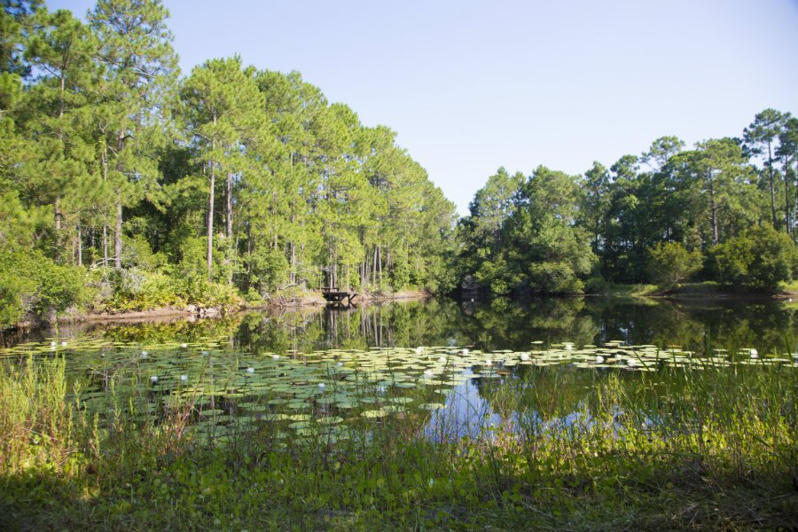 The pond was reshaped for fishing and canoeing