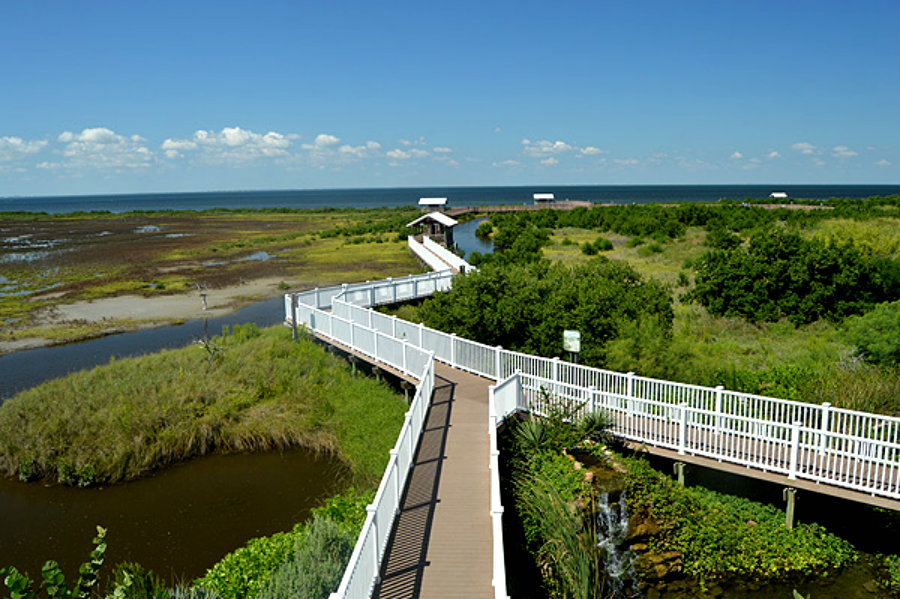 South Padre Island Bird Watching Boardwalk