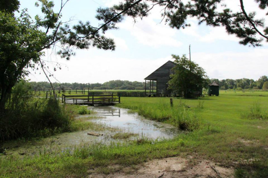 historic house to visit at the LSU Rural Life Museum