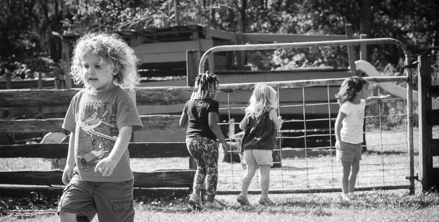 Kids at farm daycare in Jacksonville FL